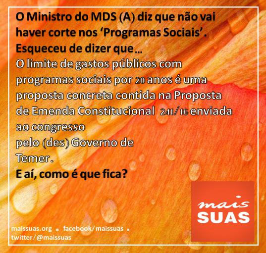 maissuas11